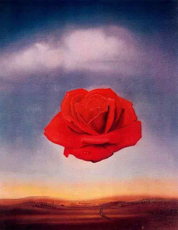 Salvador Dali - Rosa meditativa