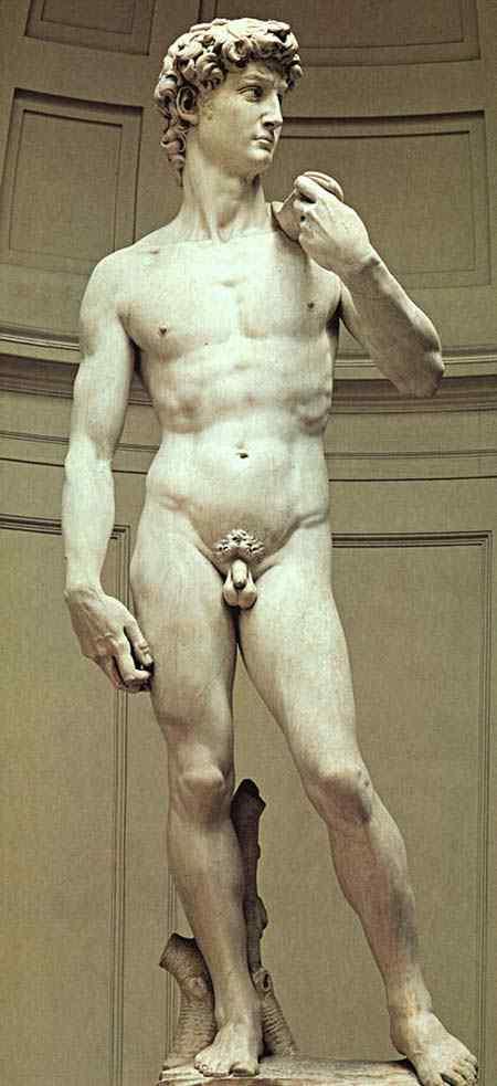 Michelangelo di Ludovico Buonarroti Simoni - David (escultura)