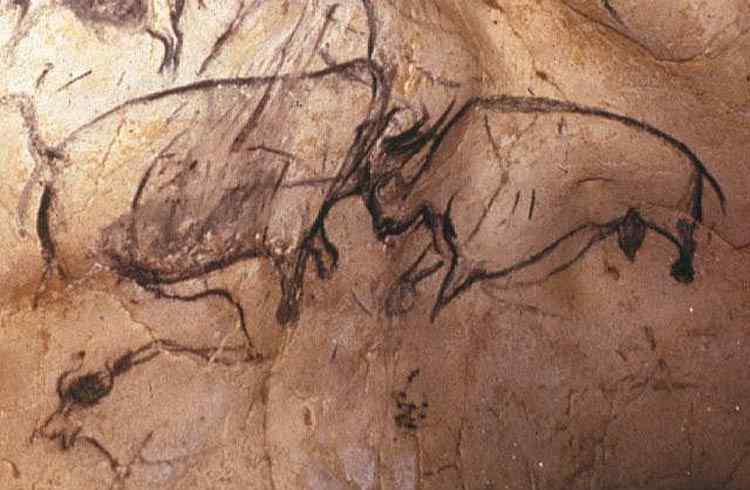 Pintura rupestre - Rinocerontes